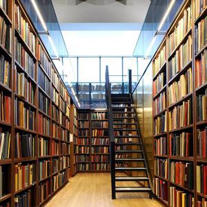 Библиотеки Бабынино